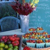 sprzedaż warzyw