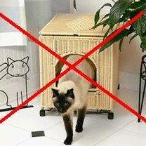Kryta kuweta dla kotów