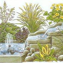 wodospad w ogródku