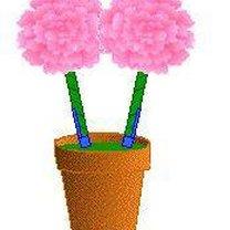 Powkładaj otrzymane kwiaty w zatyczki w cemencie