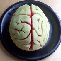mózg z arbuza