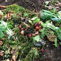 produkty przeznaczone na kompost