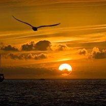zachód słońca, zachodzące słońce
