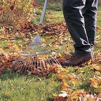 pielęgnacja trawników jesienią