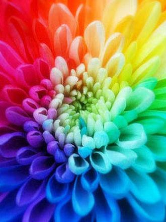 łącznienie kolorów