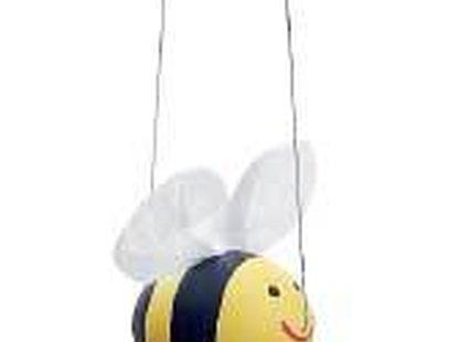 wydmuszka pszczoła