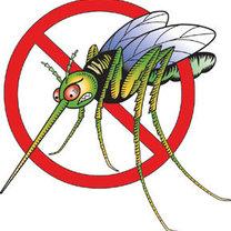 komarom mówimy zdecydowane