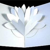 kartka z wyskakującym kwiatkiem