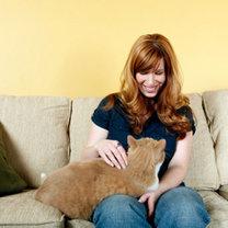 usuwanie sierści kota z ubrań