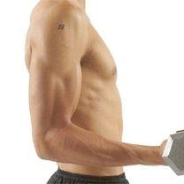 ćwiczenia na biceps dla początkujących