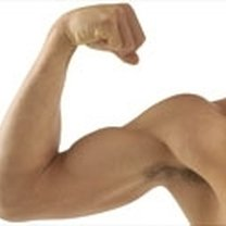trenowanie bicepsa
