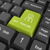 szukaj pracy