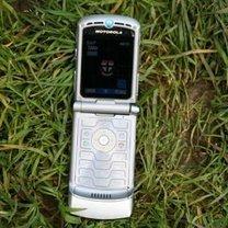 telefon w trawie