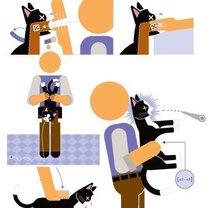 Zadławienie kota