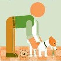 zadławienie psa - postępowanie 4