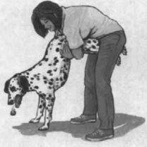 zadławienie psa
