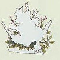 Robienie stroika na cmentarz 3