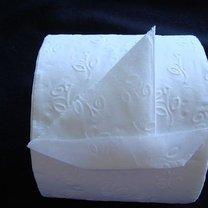 Origami - papier toaletowy