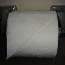 Origami na papierze toaletowym - serce 1