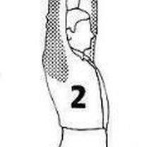 ćwiczenia na kręgosłup - krok 2.