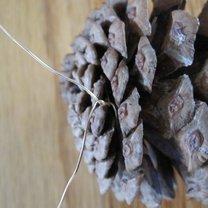 Mocowanie drucika do szyszki