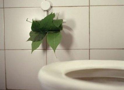 Liście zammiast papieru toaletowego