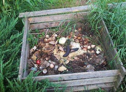 Kompost w ogrodzie