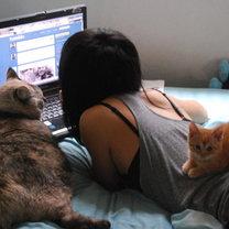 Z kotami przy komputerze