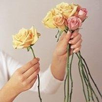 Robienie bukietu z róż 1