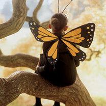 gotowy strój motyla