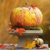 dynia na Halloween w liście