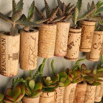 Korkowe magnesy z roślinami na lodówkę