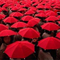 Czerwone parasolki