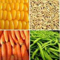 warzywa, zboże