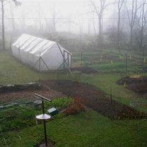 Ogród w kwietniu