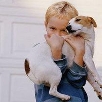 pies przyjaciel