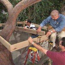 Domek na drzewie 7