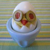 Kurczak z jajka
