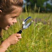 Dziecko oglądające biedronki