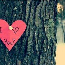Wyznanie miłości
