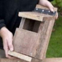 Budowa domku dla ptaków 6