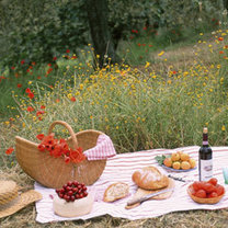 Piknik na łące