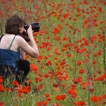 Fotografia kwiatów