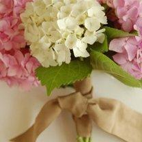 Bukiet ślubny - hortensja
