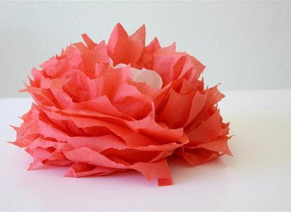 Zdjecia Z Porady Jak Zrobic Kwiaty Z Papierowych Serwetek Tipy Pl