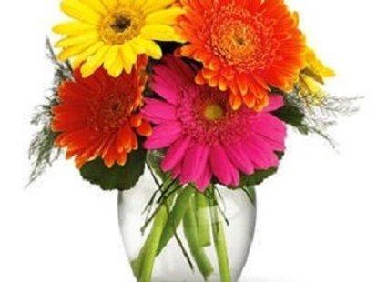 Zdjęcia Z Porady Co Zrobić Aby Kwiaty Cięte Dłużej