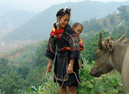 Ludzie Hmong