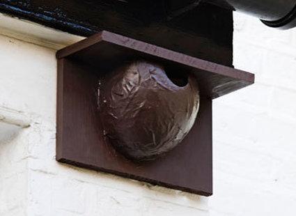 Gniazdo dla jaskółki