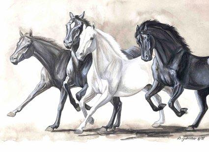 szkic - konie w ruchu
