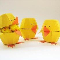 Pojemniczki - kurczaki z wytłaczanki